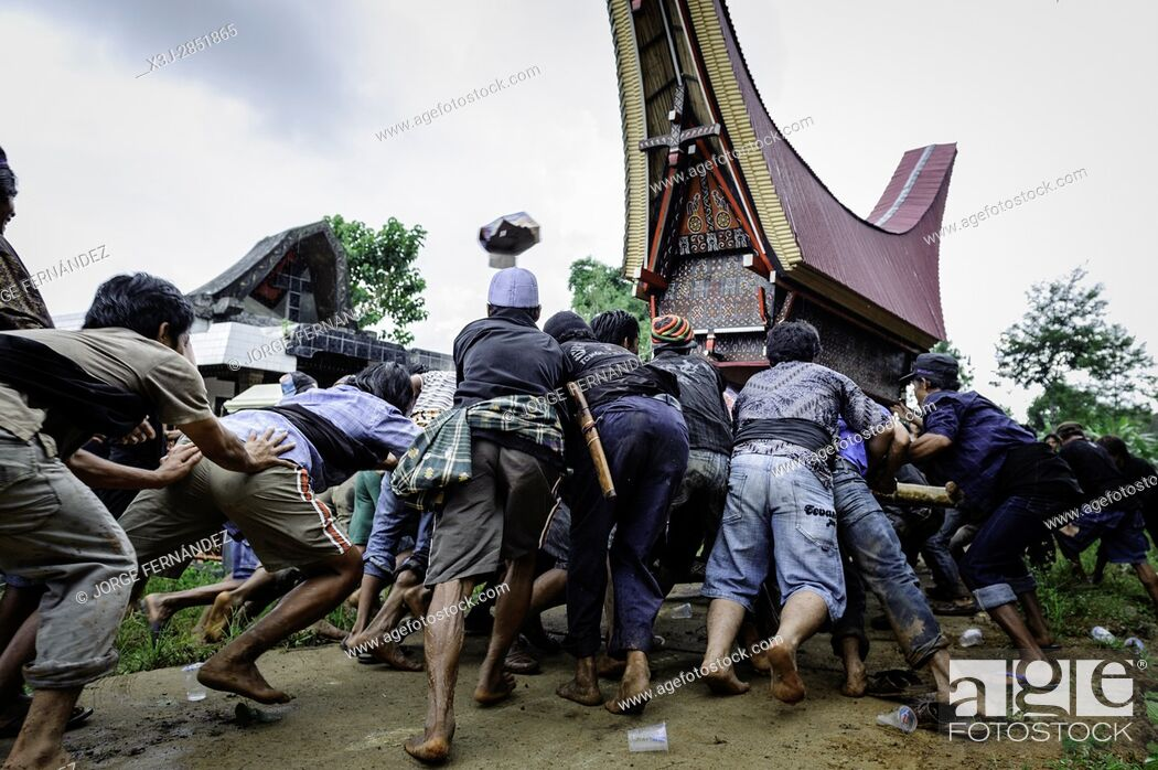 Stock Photo: During a traditional ritual funeral of the Tana Toraja the men of the village carry the catafalque in a weird funeral procession in which the people at the.
