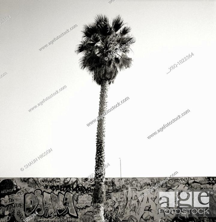 Stock Photo: Venice Beach, Los Angeles, California, USA.