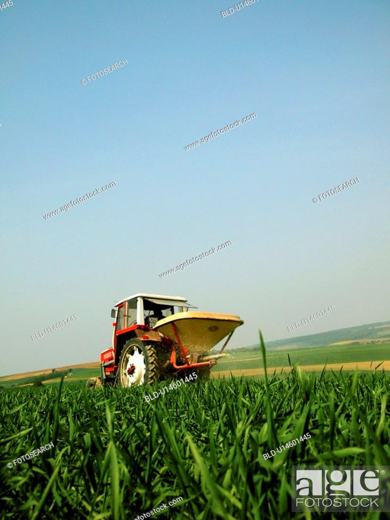 Stock Photo: Tractor in a corn field.