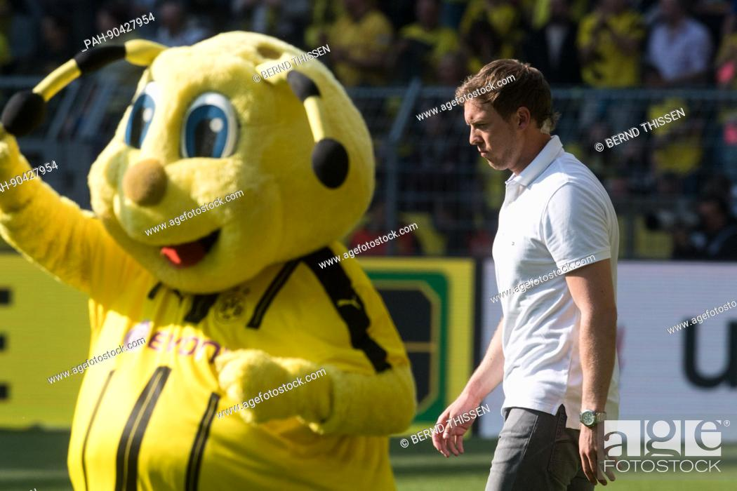 Hoffenheim S Manager Julian Nagelsmann Walks Past Emma The Dortmund Mascot At The End Of The German Stock Photo Picture And Rights Managed Image Pic Pah 90427954 Agefotostock
