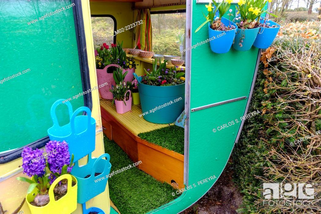 Stock Photo: Keukenhof flower garden, Lisse, Netherlands, Europe.