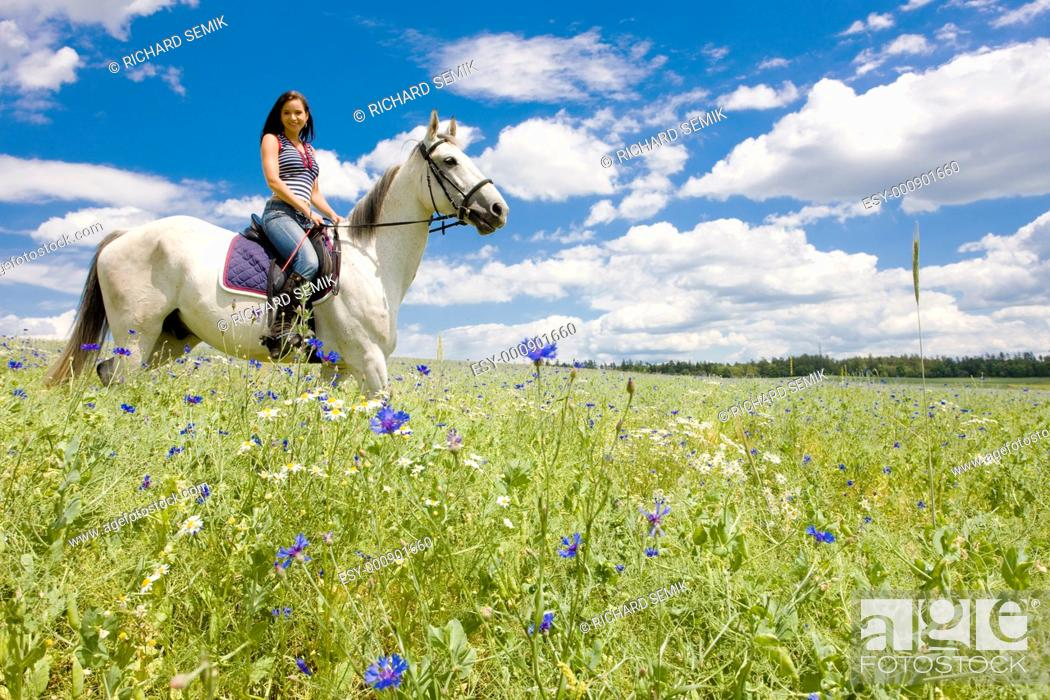 Stock Photo: equestrian on horseback.