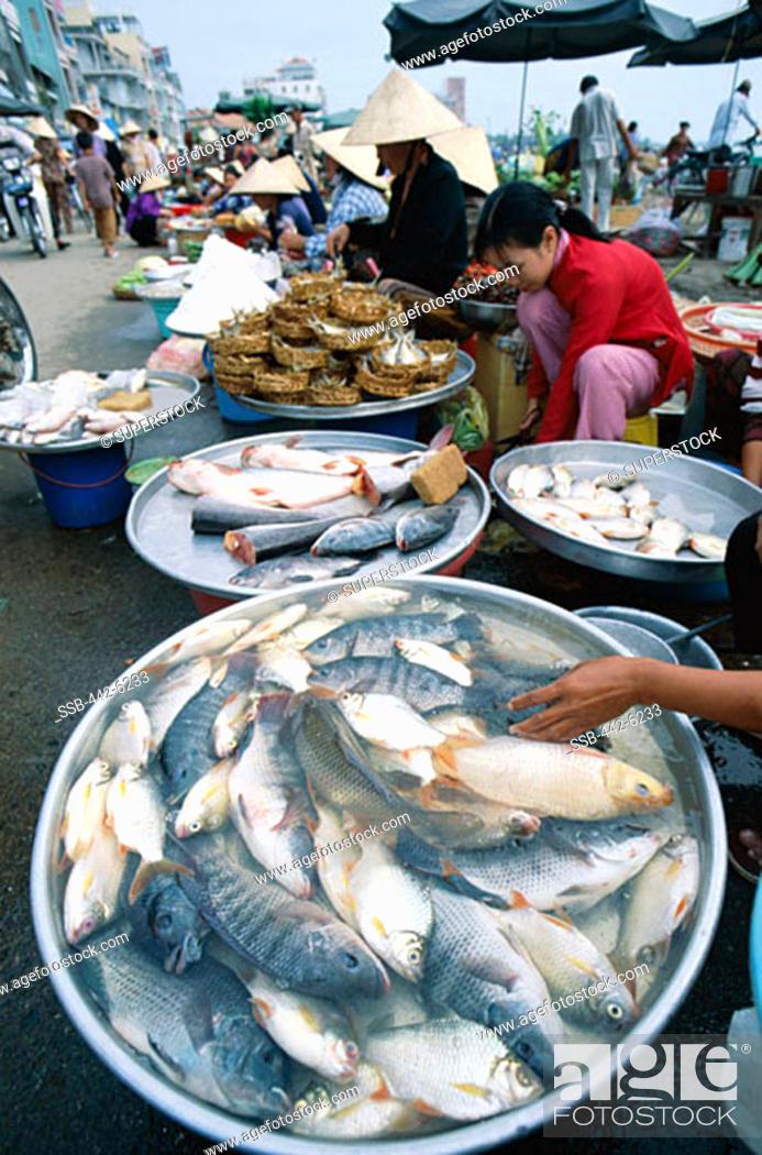 Stock Photo: Fresh Fish, Local Produce, Market, Can Tho, Mekong Delta, Vietnam.