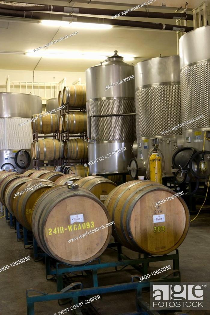 Stock Photo: Wine barrels in winery.