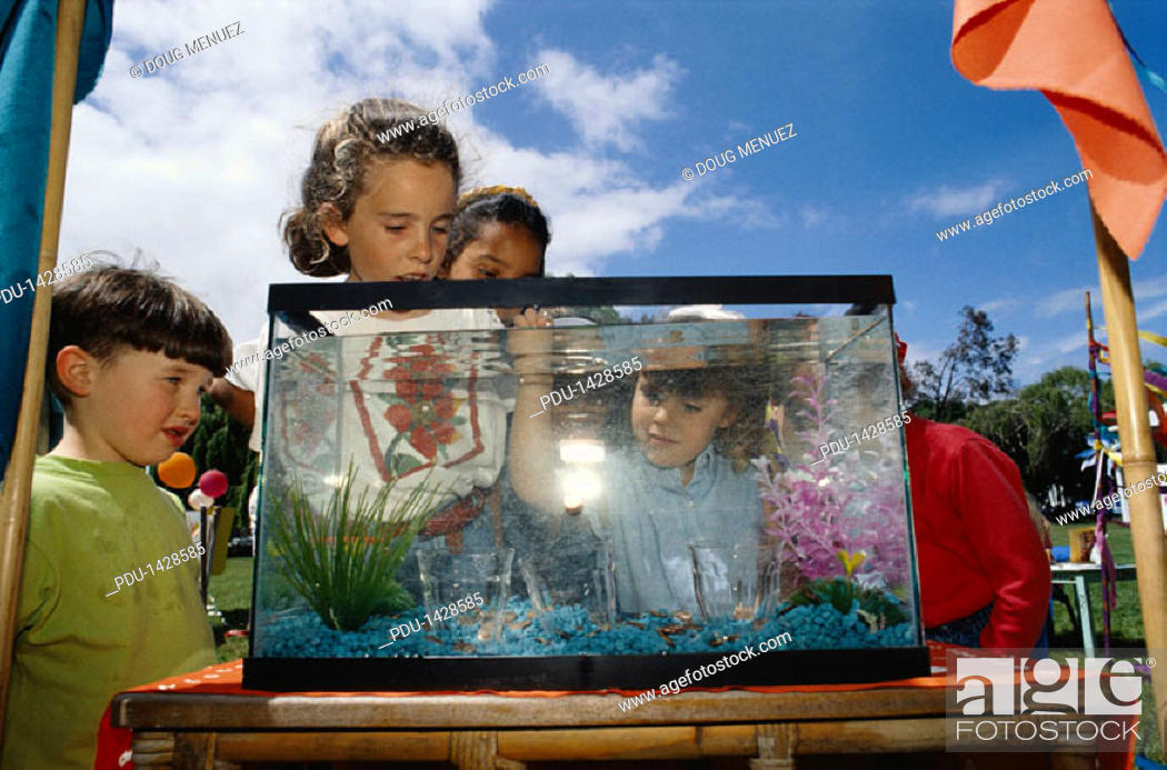 Stock Photo: Children Dropping Coins into Tank.