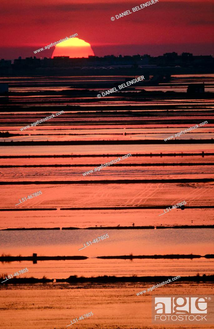 Stock Photo: Flooded rice fields. Albufera Natural Park. Valencia province. Spain.