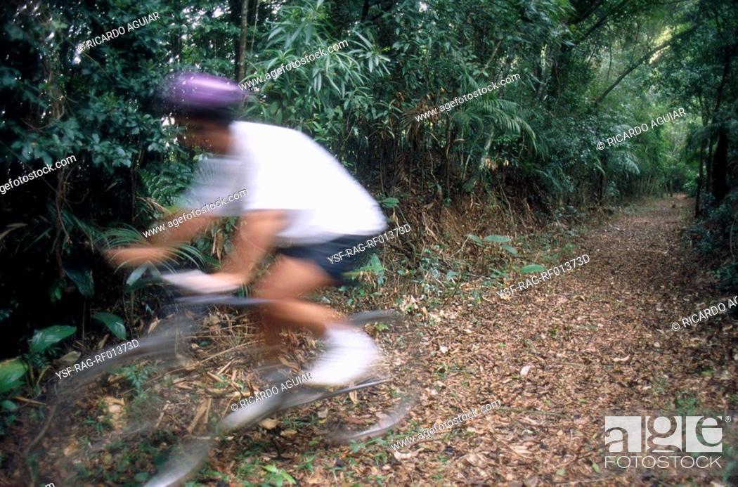 Stock Photo: Cyclist, Tijuca Forest, Rio de Janeiro, Brazil.