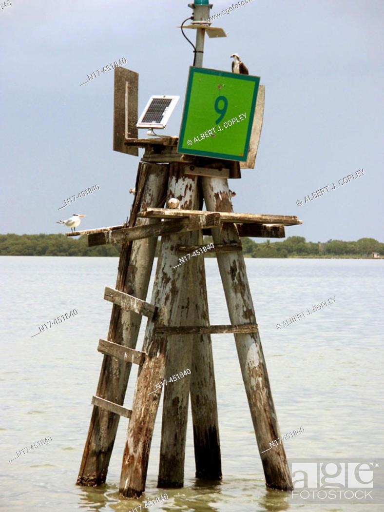 Stock Photo: Florida Everglades, solar array,.