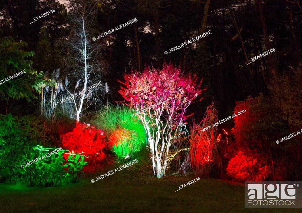 Imagen: Light painting in park at night.