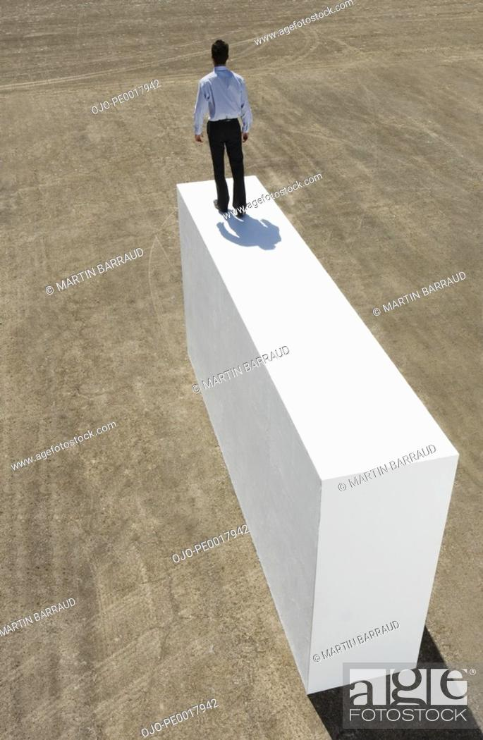 Stock Photo: Rear view of businessman standing on block outdoors.