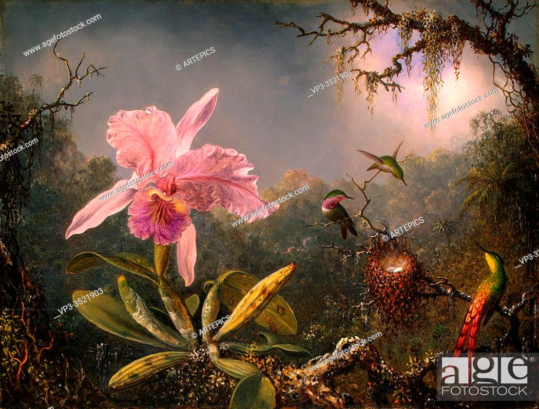 Imagen: Martin Johnson Heade - Cattley Orchid Three Hummingbirds 1871.