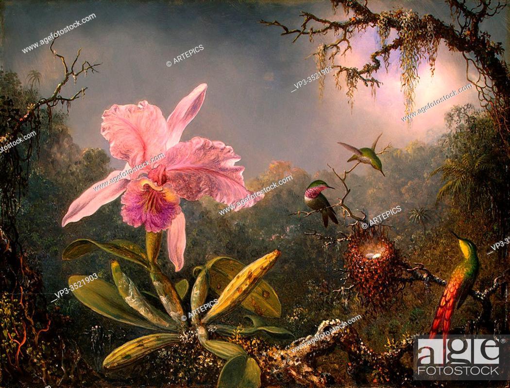 Stock Photo: Martin Johnson Heade - Cattley Orchid Three Hummingbirds 1871.