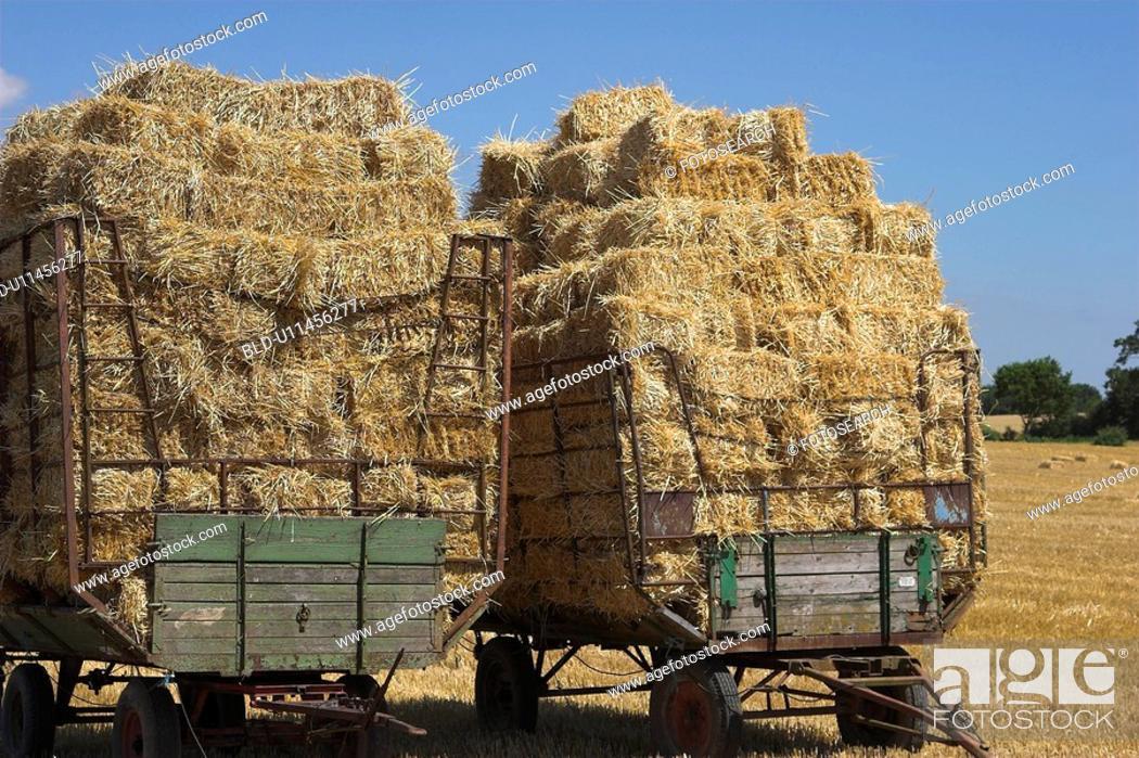 Stock Photo: ballen, wagen, agriculture, blue, day, field.