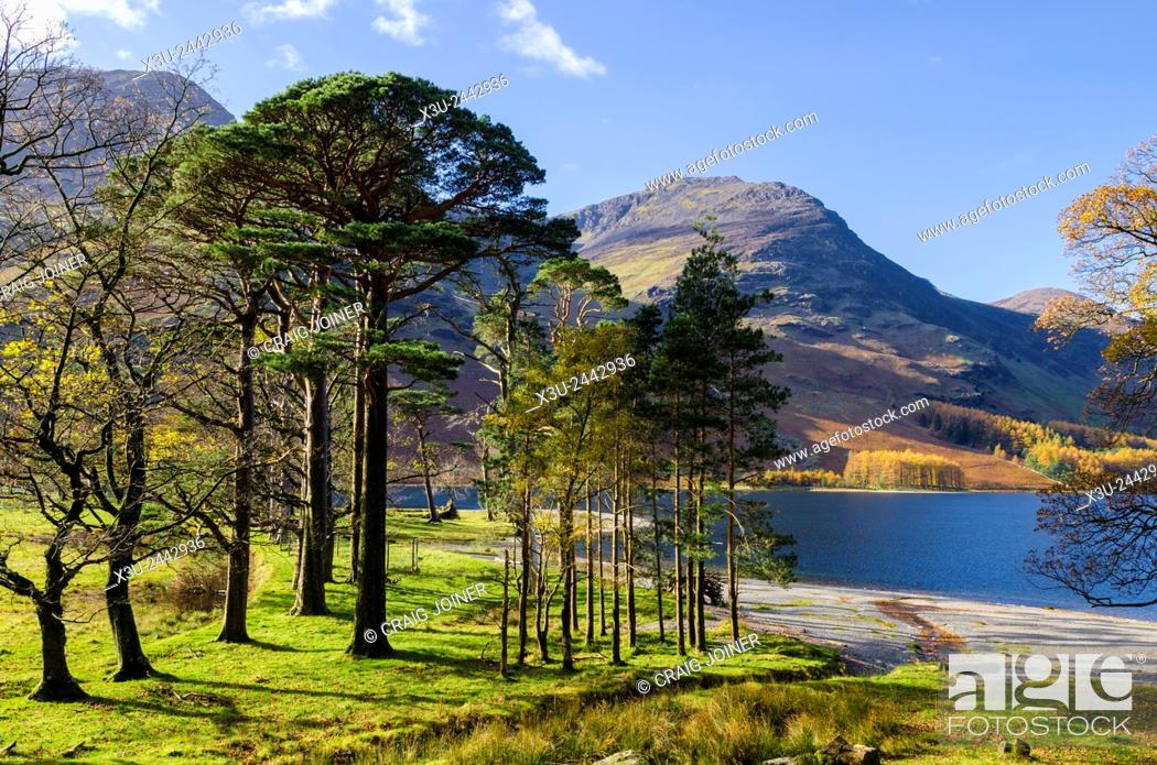 Stock Photo: The south eastern shore of Buttermere lake, Lake District. Cumbria, England.