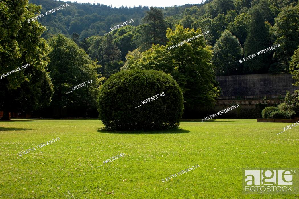 Stock Photo: Heidelberg castle.