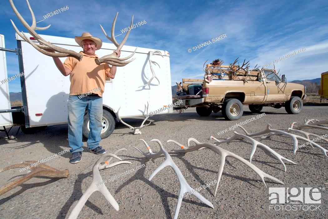Stock Photo: Man holding antlers for sale in Taos, New Mexico, United States of America, North America.