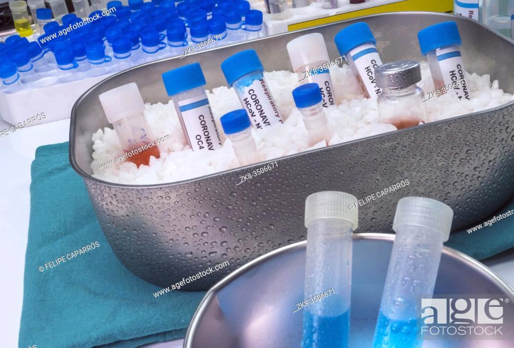 Stock Photo: Vials with samples of SARS-COV-2 Covid-19 prepared cold in a hospital, conceptual image.
