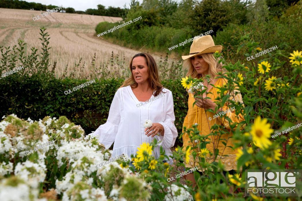 Stock Photo: Women working on garden in countryside.
