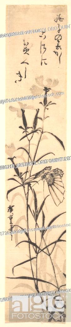 Stock Photo: Black and White Print of Butterfly and Flower (a Pink), Edo period (1615–1868), Japan, Polychrome woodblock print; ink and color on paper, 12 3/4 x 2 3/8 in.