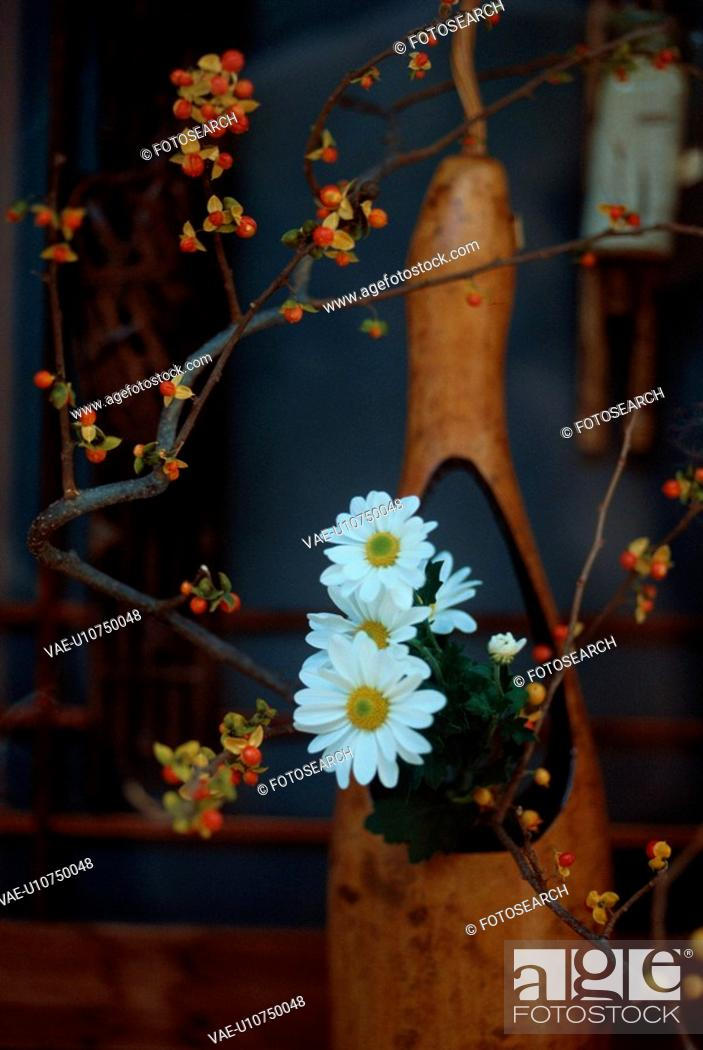 Stock Photo: Daisies And Twigs.