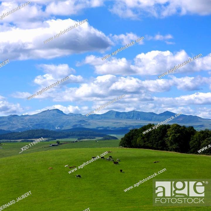 Stock Photo: Massif of Sancy, Département Puy-de-Dôme, Region Auvergne, France, Europe.