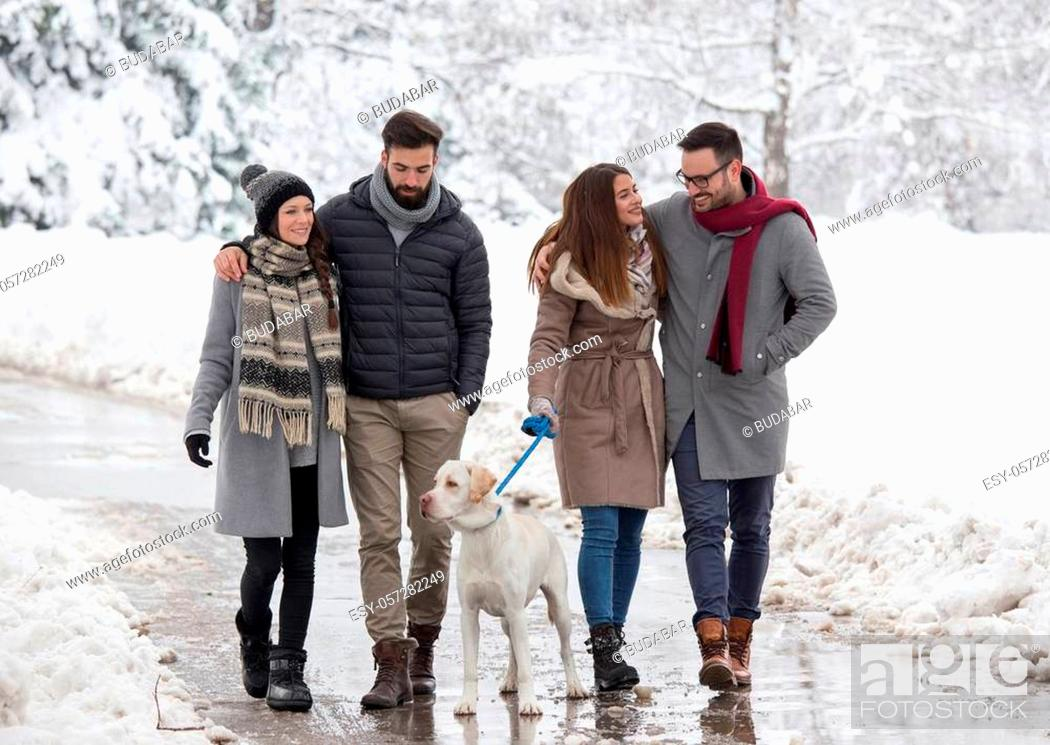 Stock Photo: Two couples walking dog in park in winter time with lot of snow.