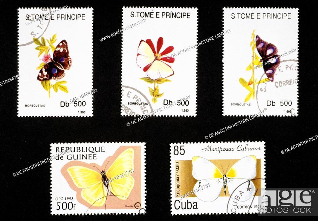 Imagen: Postage stamps honouring butterflies: top, postage stamps depicting Longwing butterfly (Heliconius sp), Pieris sp and Ninphalis sp, 1993.