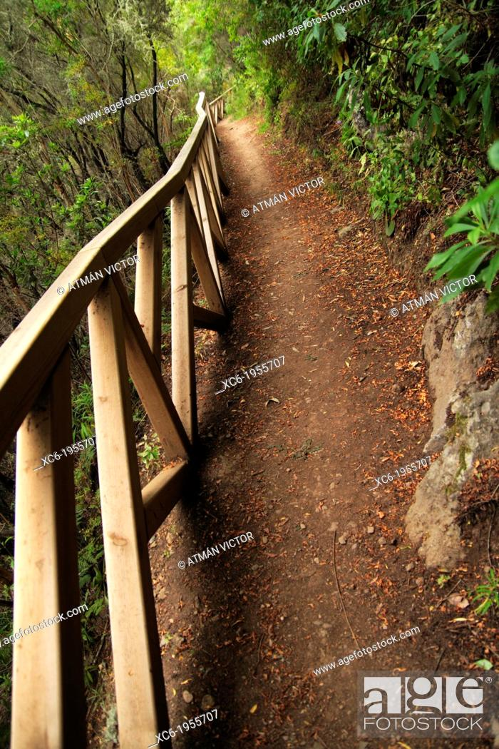 Stock Photo: detail of path in Ruiz ravine. Tenerife island. spain.