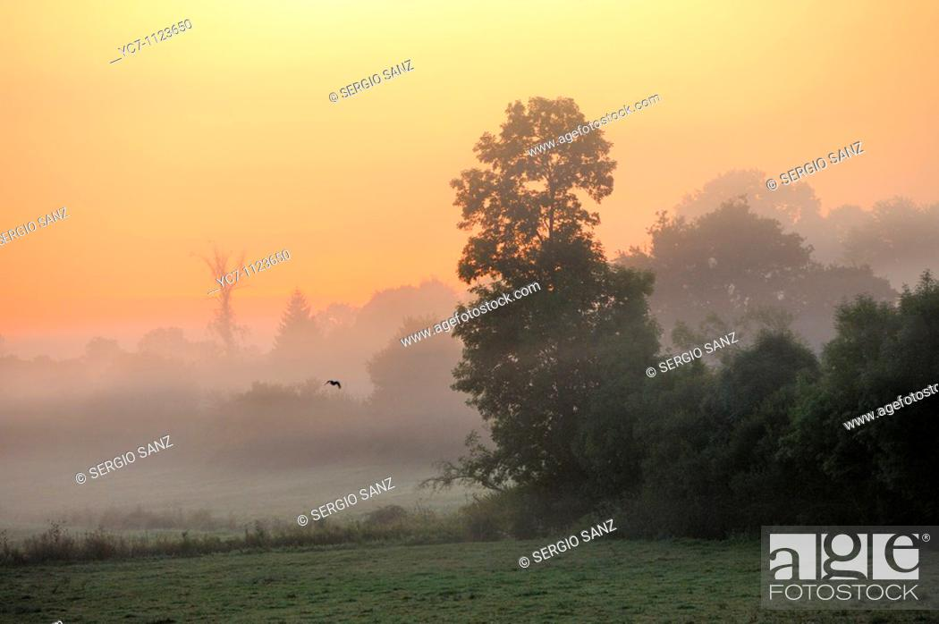 Stock Photo: dawn in the French countryside.