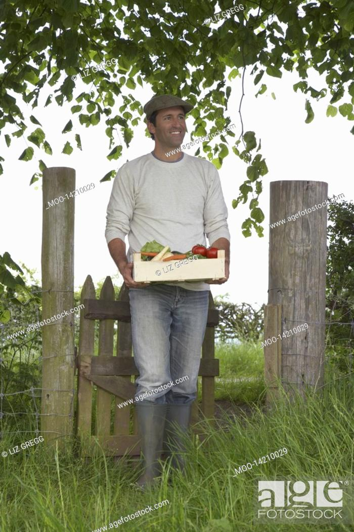 Stock Photo: Man carrying crate of fruit and vegetables in countryside.