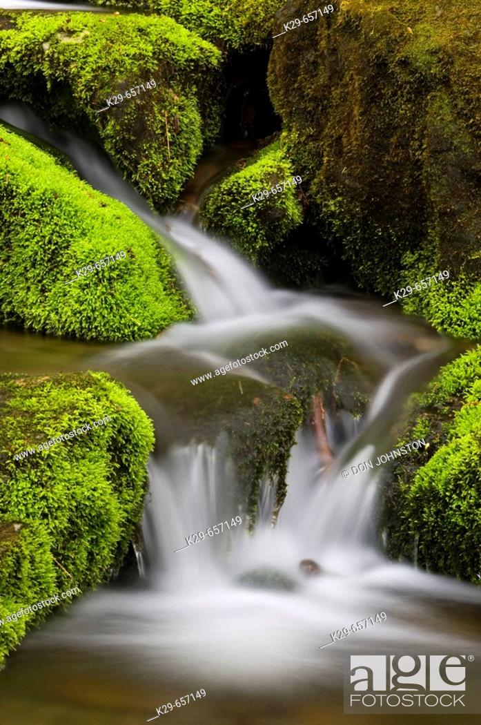 Stock Photo: Mossy cascade in mountain stream. Great Smoky Mountains National Park, Tennessee, Appalachian, USA.