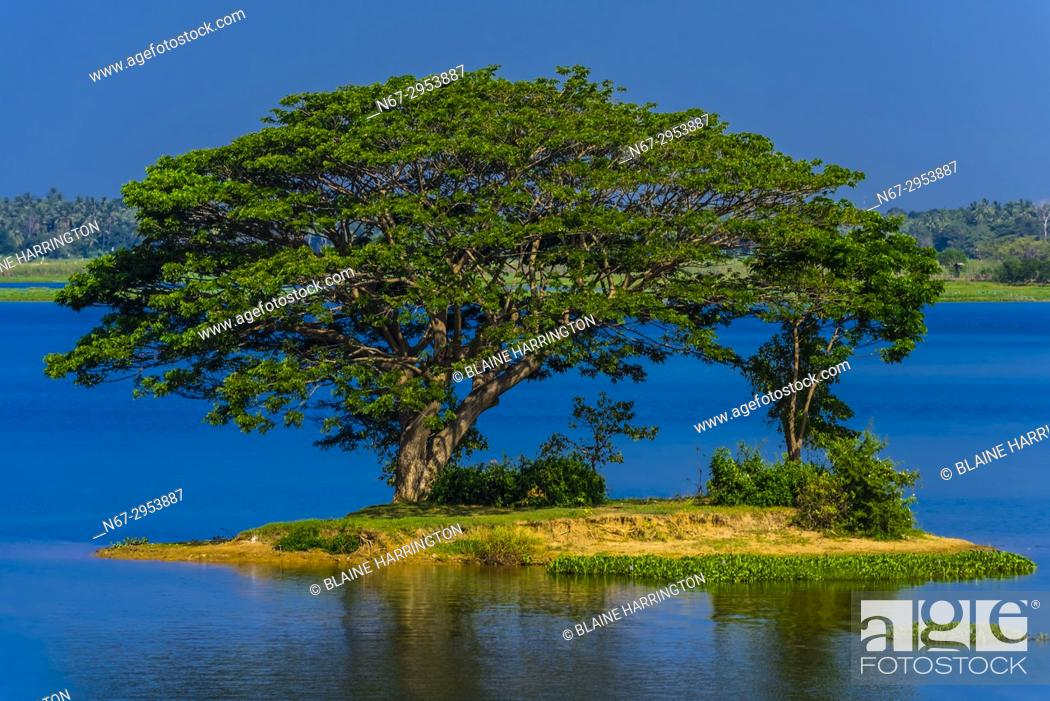Photo de stock: Tissa Lake, Tissamaharama, Southern Province, Sri Lanka.