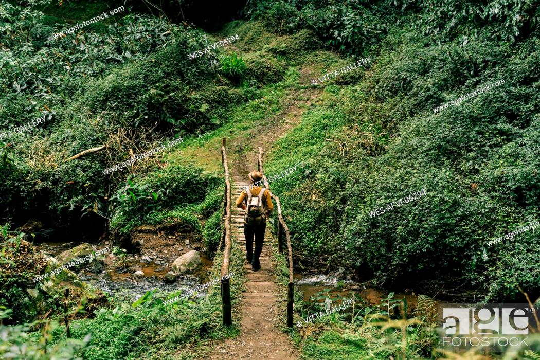 Photo de stock: Rear view of man hiking on a remote trail on Sao Miguel Island, Azores, Portugal.