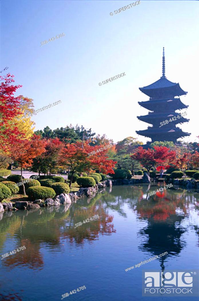 Stock Photo: Autumn Leaves and Five-story Pagoda, Toji Temple (Kyo-o-gokoku-ji), Kyoto, Honshu, Japan.
