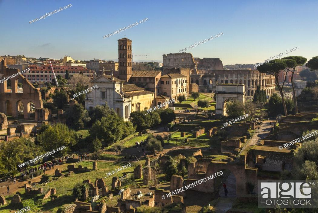 Stock Photo: Roman forum of Rome with the colosseum in the background (Italy).