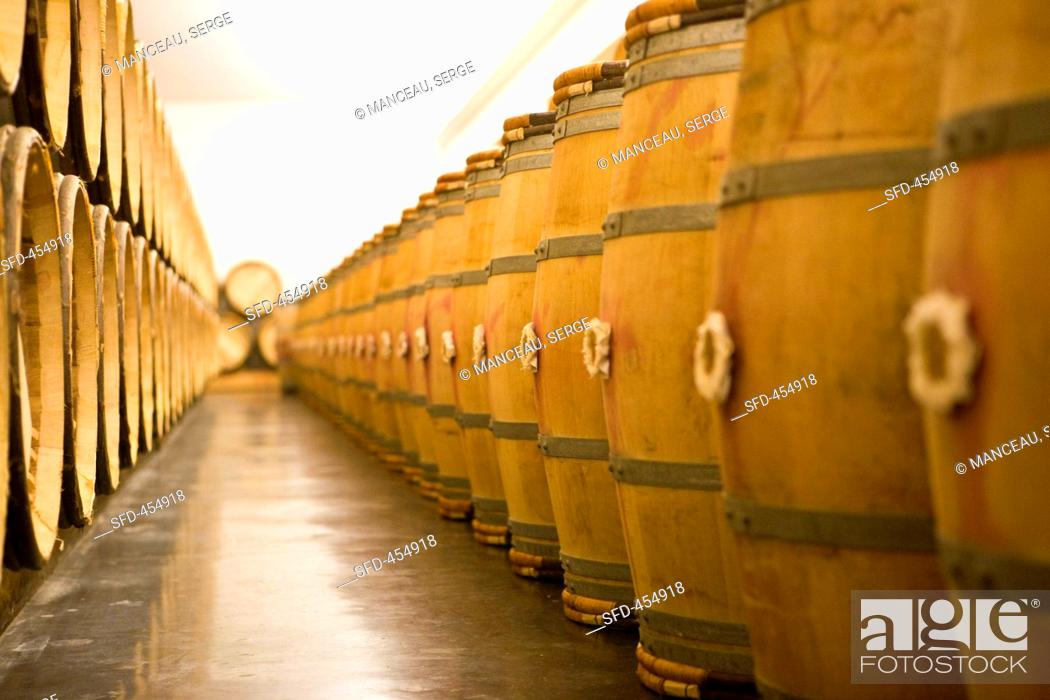 Stock Photo: Wine aging in wooden barrels Chateau Lynch-Bages Winery, France.