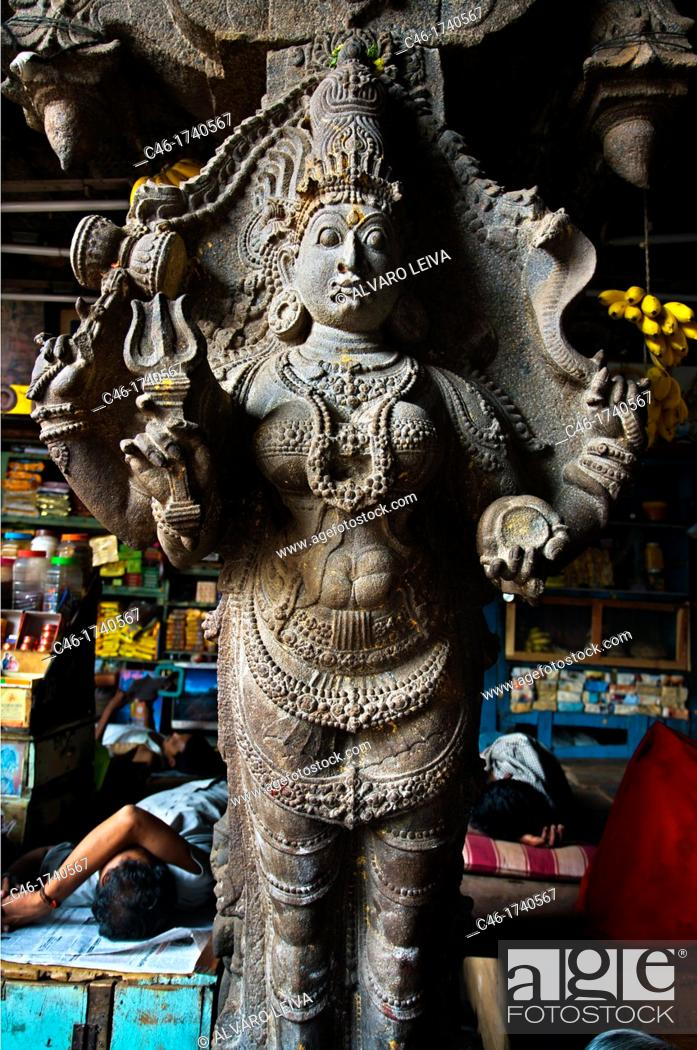 Stock Photo: Market, Madurai  Tamil Nadu  India.
