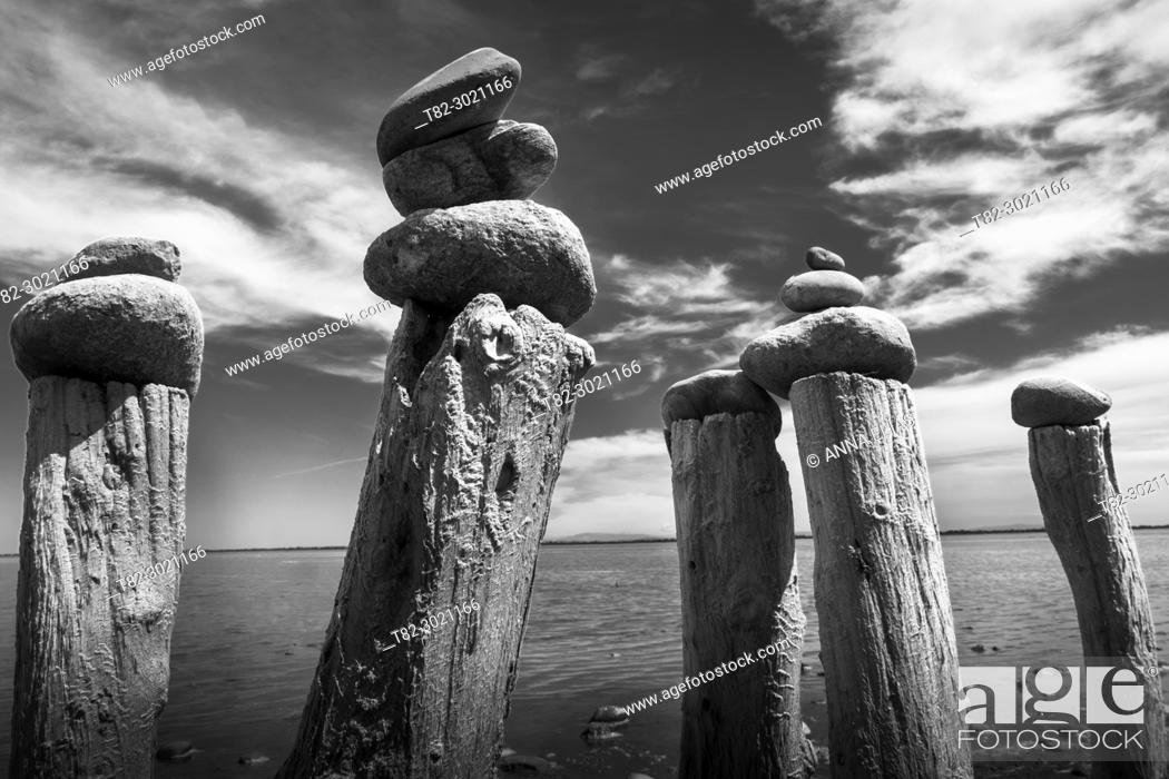 Stock Photo: black and white landscape stones on wooden sticks in the Natural Park of La Camargue, France, Europe.
