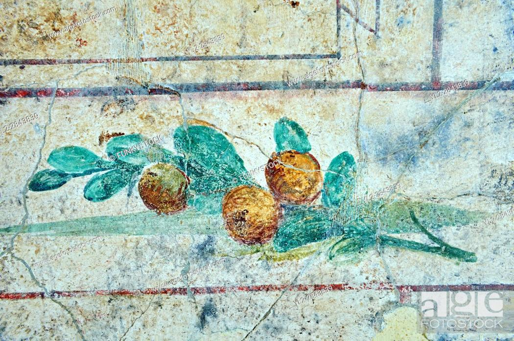Stock Photo: Roman Fresco of fruit bird from The Large Columbarium in Villa Doria Panphilj, Rome. A columbarium is usually a type of tomb with walls lined by niches that.