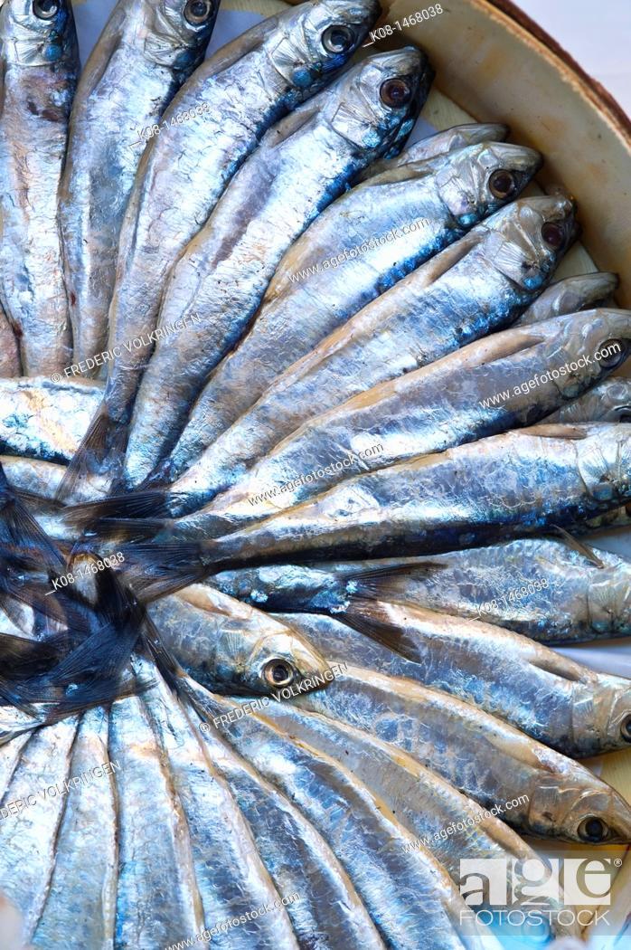Photo de stock: Sardines at a fishmonger's, Spain.