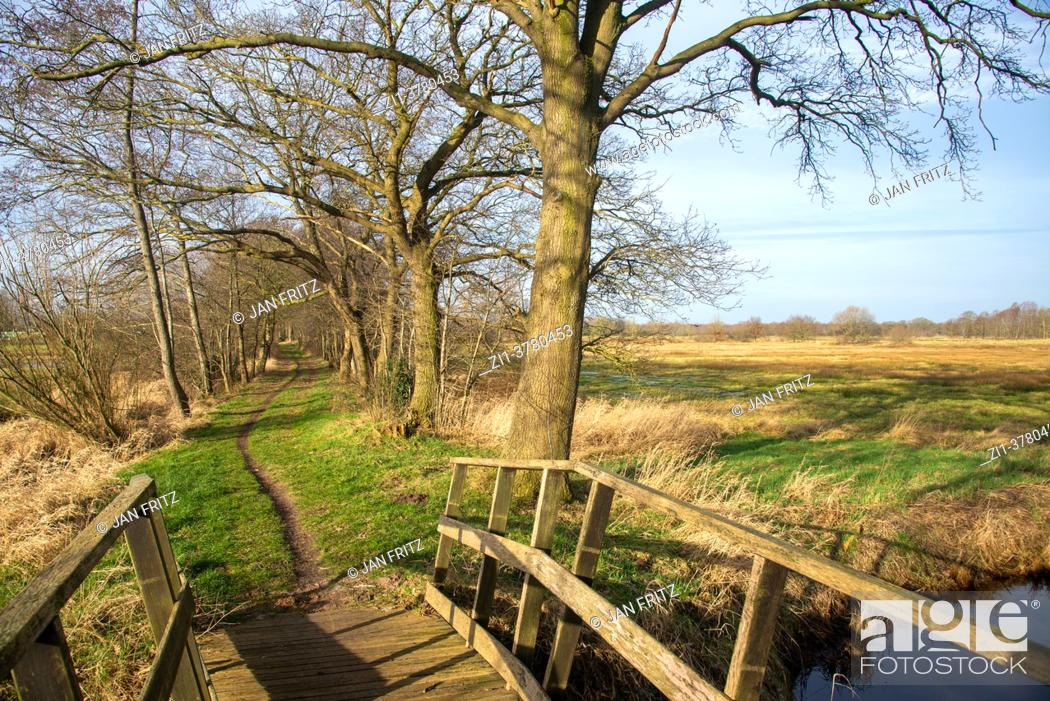 Photo de stock: small wooden bridge over Reest brook in Salland, Overijssel, Holland.