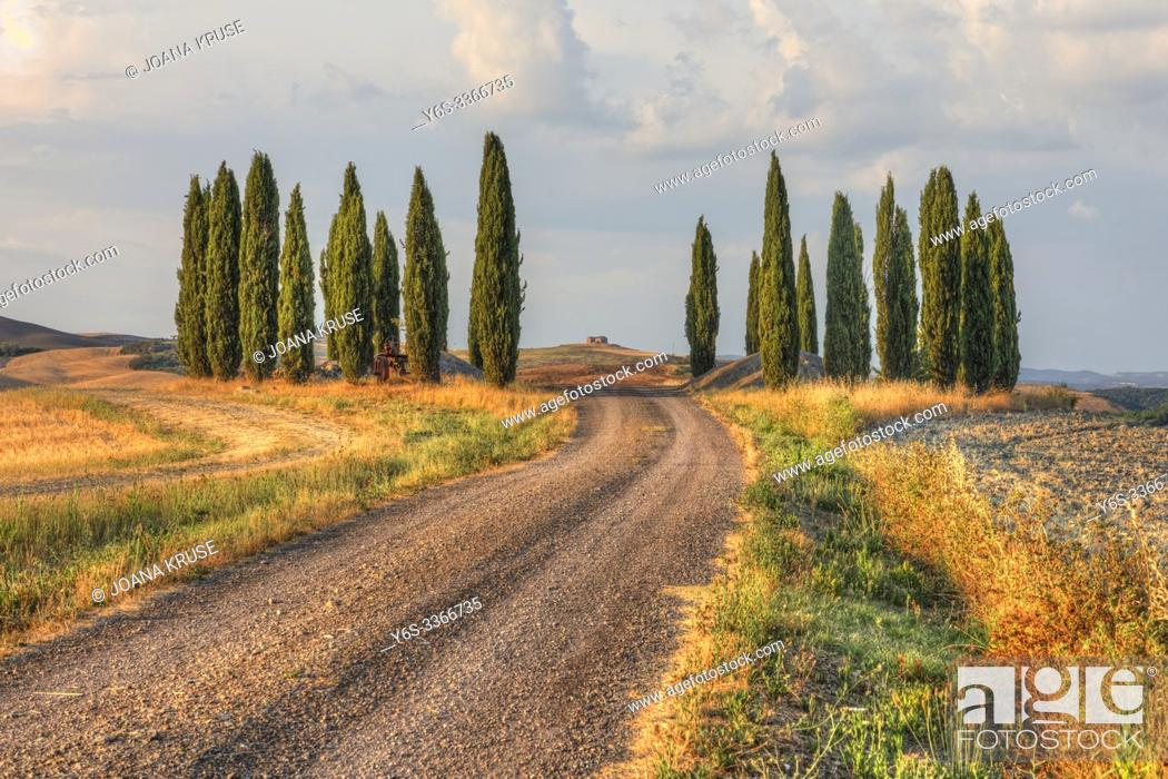 Stock Photo: San Quirico, Tuscany, Italy, Europe.