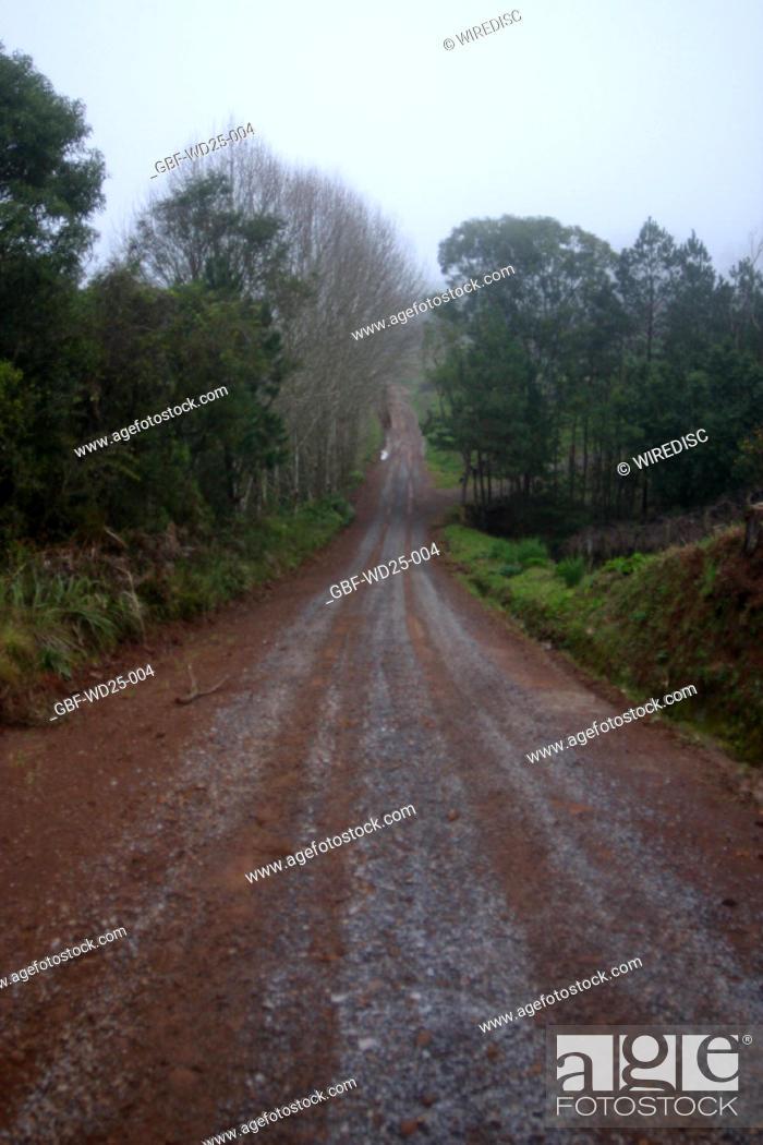 Stock Photo: Transport, dirt, road.