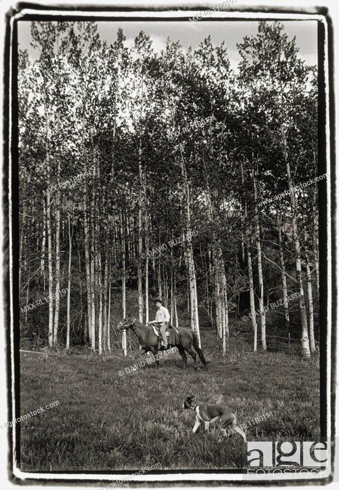 Stock Photo: Horseback riding, Ruddock Ranch, B.C.