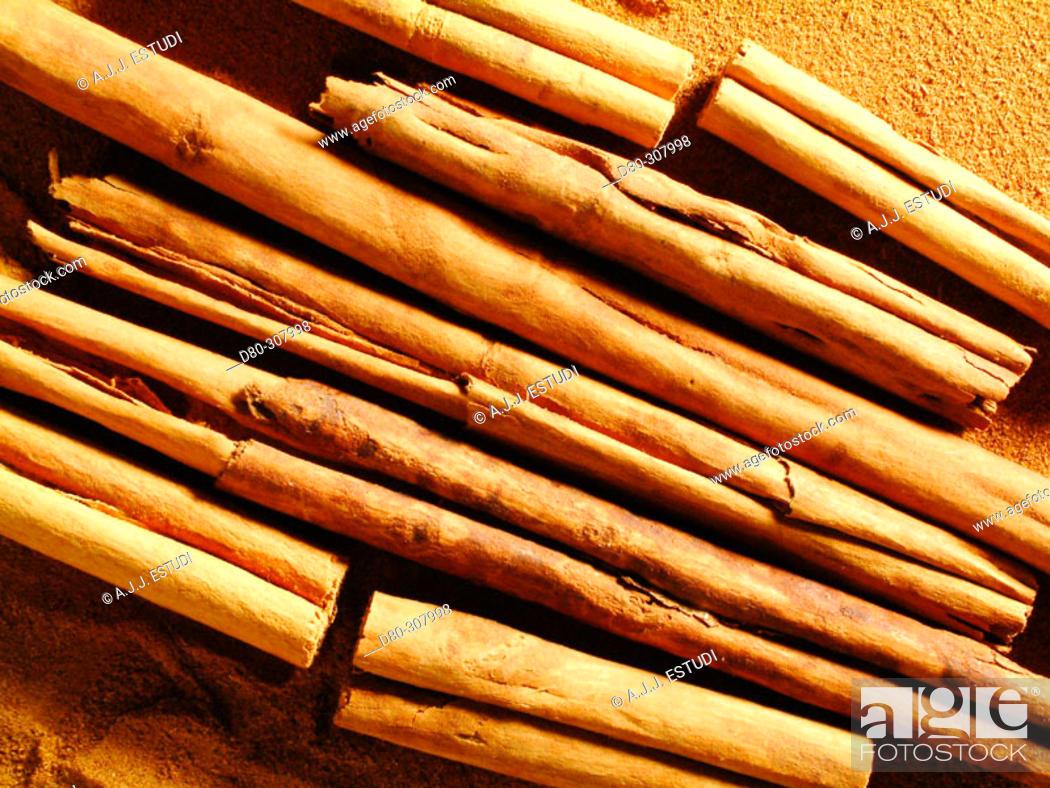 Stock Photo: Cinnamon.