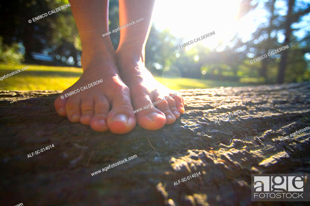 Stock Photo: Close up of feet on tree trunk.