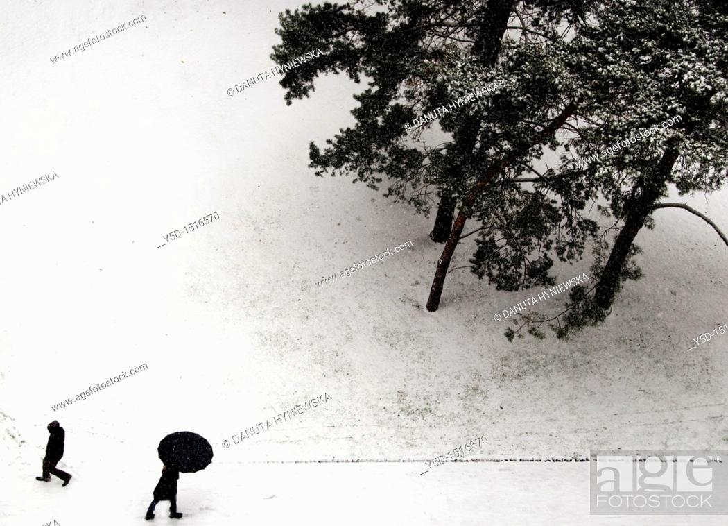 Stock Photo: we are passing by, snowy street, winter in Geneve, Switzerland.
