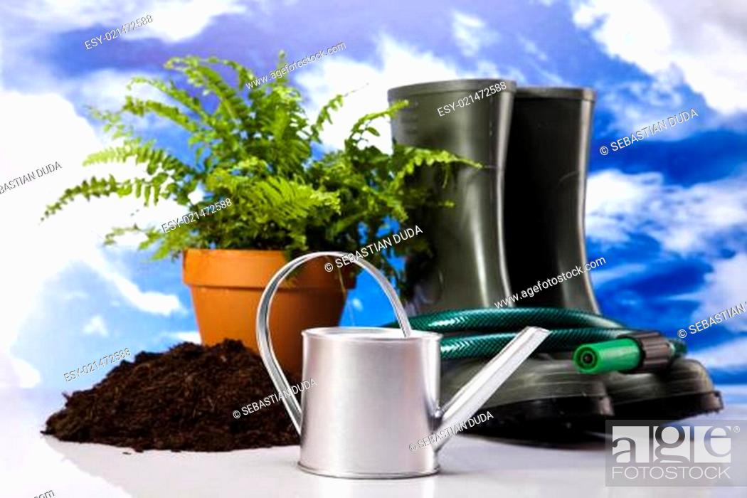 Stock Photo: Watering Can And Gardening Tool.