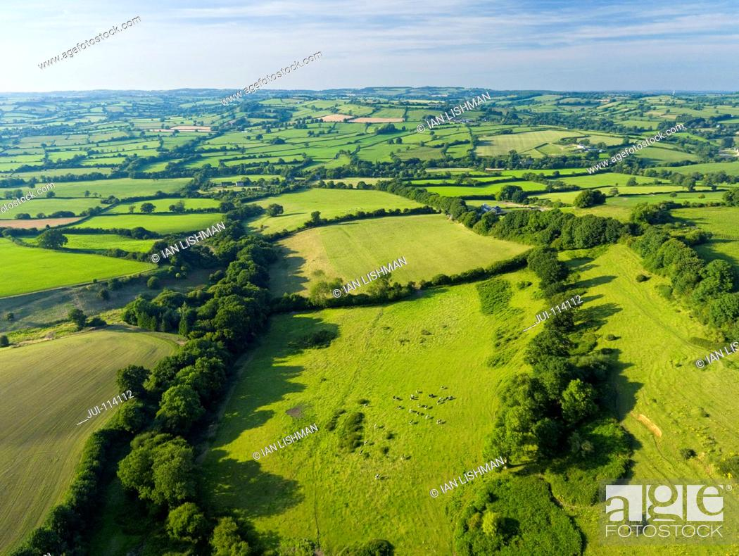 Stock Photo: Aerial View Of Green English Farm Fields In Dorset.