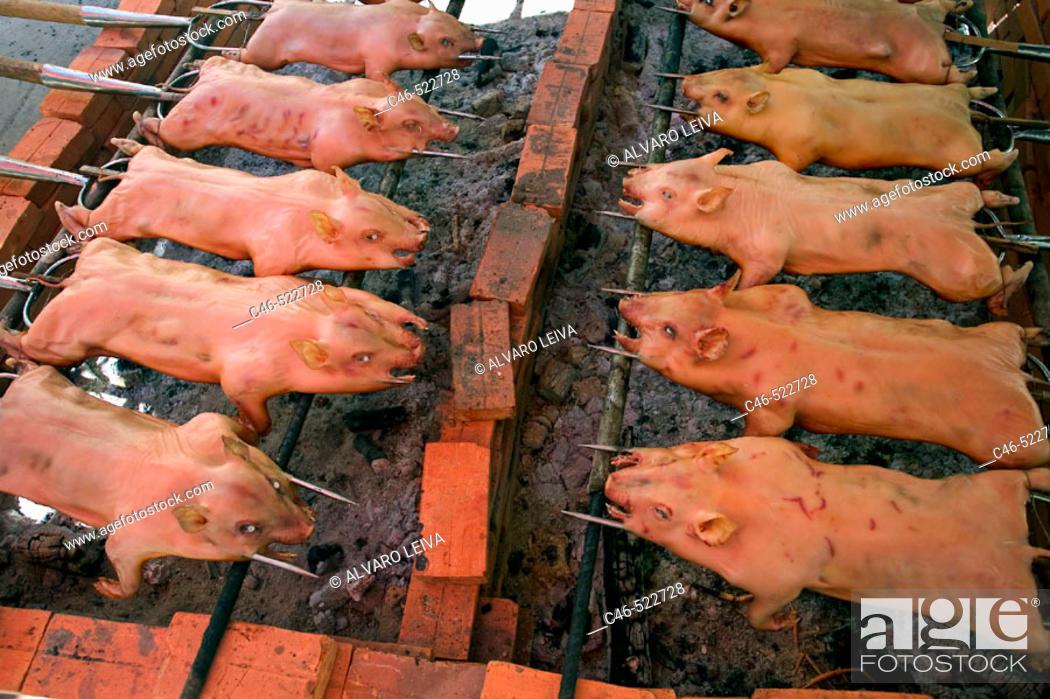 Imagen: Porks, Ben Tree, Mekong Delta. Vietnam.